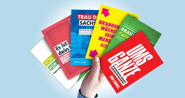 Collage: (1) CDU Sachsen (2) SPD Sachsen (3) AfD Sachsen (4) FDP Brandenburg (5) Grüne Brandenburg (6) Linke Brandenburg